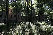 Kraszowice Ruiny palacu Bibranow 04.JPG