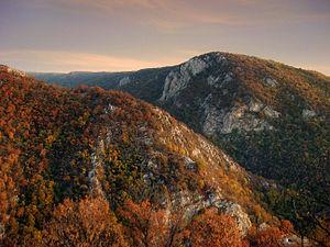 Kučaj - Image: Kucaj mountains