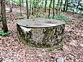 L'ancien puits du château.jpg