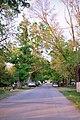 La Grange KY - Madison Street.jpg