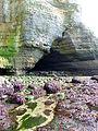 La grotte aux pigeons à La Poterie Cap d'Antifer (Normandie).JPG