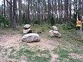 Labanoro sen., Lithuania - panoramio (4).jpg
