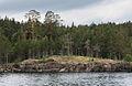 Ladoga 0617.jpg