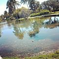 Laguna en tucacas. edo- falcon.jpg