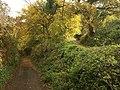 Lanes at Blaxton - geograph.org.uk - 1044490.jpg