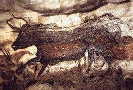 Afbeeldingsresultaat voor grotten van lascaux