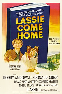 <i>Lassie Come Home</i> 1943 film by Fred M. Wilcox