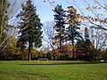 Laurelhurst Park, Portland, fall 2011.JPG
