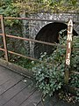 Leawood Tunnel - geograph.org.uk - 1522391.jpg