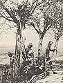 Legiony Polskie, wciąganie karabinu maszynowego na drzewo.jpg