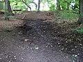 Lesopark Belveder, pramen Královka, prameniště nad cestou.jpg