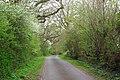 Lewd Lane - geograph.org.uk - 398098.jpg