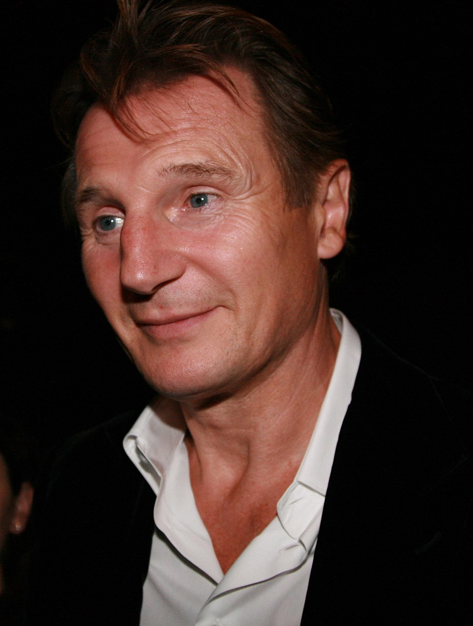 Liam Neeson at 2008 TIFF cropped