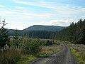 Linfern Road - geograph.org.uk - 260672.jpg