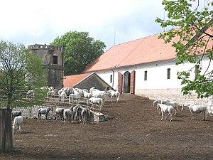 Lipica, Sežana - Lipica Stud Farm
