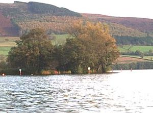 Llangorse Lake - The crannog