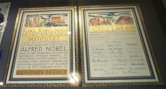 Otto Loewi - The Nobel Prize diploma of Otto Loewi, housed at the University of Graz