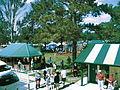Logan Village, Queensland, Settlers Day 2013 Village Green.jpg