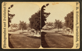 Looking down Main Street, Northfield, by McIntosh, R. M., b. 1823.png