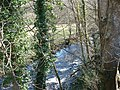 Looking down on the Afon Artro - geograph.org.uk - 1043732.jpg