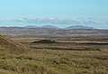 Looking into the Moor - geograph.org.uk - 349877.jpg