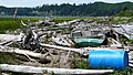 Lower Umpqua Coastal Debris - panoramio.jpg