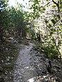 Lubenice - Put Za Plaze - panoramio (3).jpg