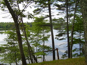 Ludington State Park 2005 001.jpg