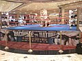 MGM Pacquiao vs. Hatton pre-fight ring.jpg