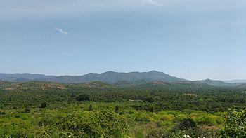 MOUNTAIN VIEW 1.jpg