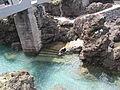 Madeira em Abril de 2011 IMG 1541 (5661314211).jpg