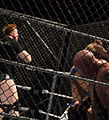 Mahal into the Cage.jpg