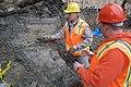 Mammoth bones found at OSU expansion of Valley Football Center - DSC 0393 - 24649605555.jpg