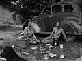 Man and woman picnic under a tree next to a car (AM 77435-1).jpg