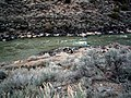 Manby Hot Spring, Rio Grande Gorge - overview.jpg