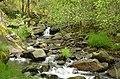 Marão Trail Adventure XVII (41756634365).jpg