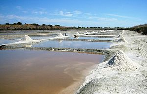 Salt evaporation pond - Salt evaporation pond in Île de Ré, France