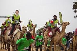Maralal Camel Derby.jpg