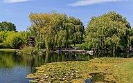 Marzahn Gaerten der Welt 08-2015 img07 Chinese Garden.jpg