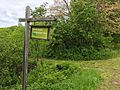 Mason Street Conservation Area, Rehoboth Masschusetts.jpg