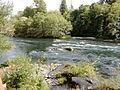 McKenzie River (23198256271).jpg