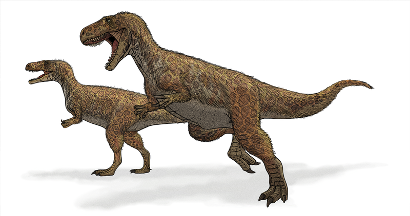 Modern restoration of Megalosaurus