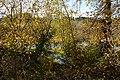 Mercer Slough Nature Park 01.jpg