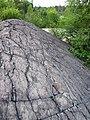 Metagraywackes (Chelmsford Formation, Paleoproterozoic, 1.74 Ga; Larchwood North outcrop, Sudbury Impact Structure, Ontario, Canada) 18 (47708653472).jpg