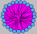 Micelle Self-assembly.png