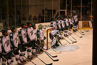 Michigan State Spartans men's ice hockey - Michigan State Spartans men's ice hockey team in 2008