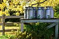 Milk Cans in Fall (8087053801).jpg