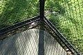 Mineola Memorial Pk td (2019-06-08) 070 - Tennis Courts.jpg