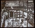 Moa skeletons exhibition, 1870, Canterbury Museum, 2016-01-27.jpg