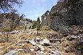 Mont Chetif 10.jpg